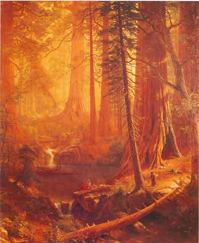 Albert Bierstadt, Giant Redwood Trees of California Fine Art Reproduction Oil Painting